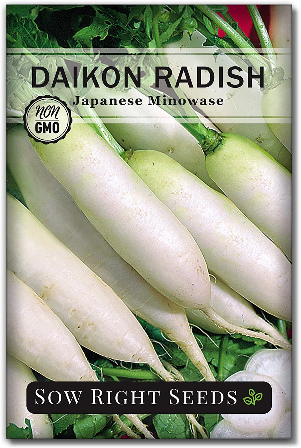 Sow Right Seeds - Japanese Minowase Daikon Radish Seed for Planting - Non-GMO Heirloom Packet with Instructions to Plant a Home Vegetable Garden - Great Gardening Gift (1)