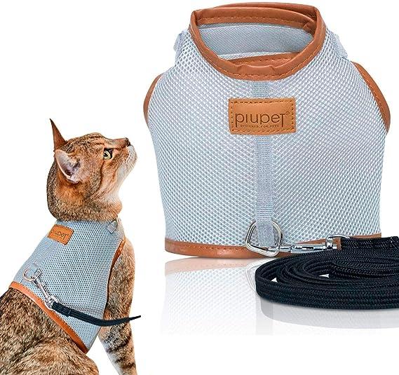 PiuPet® Arnes para Gato Collar Seguro y Robusto (S): Amazon ...