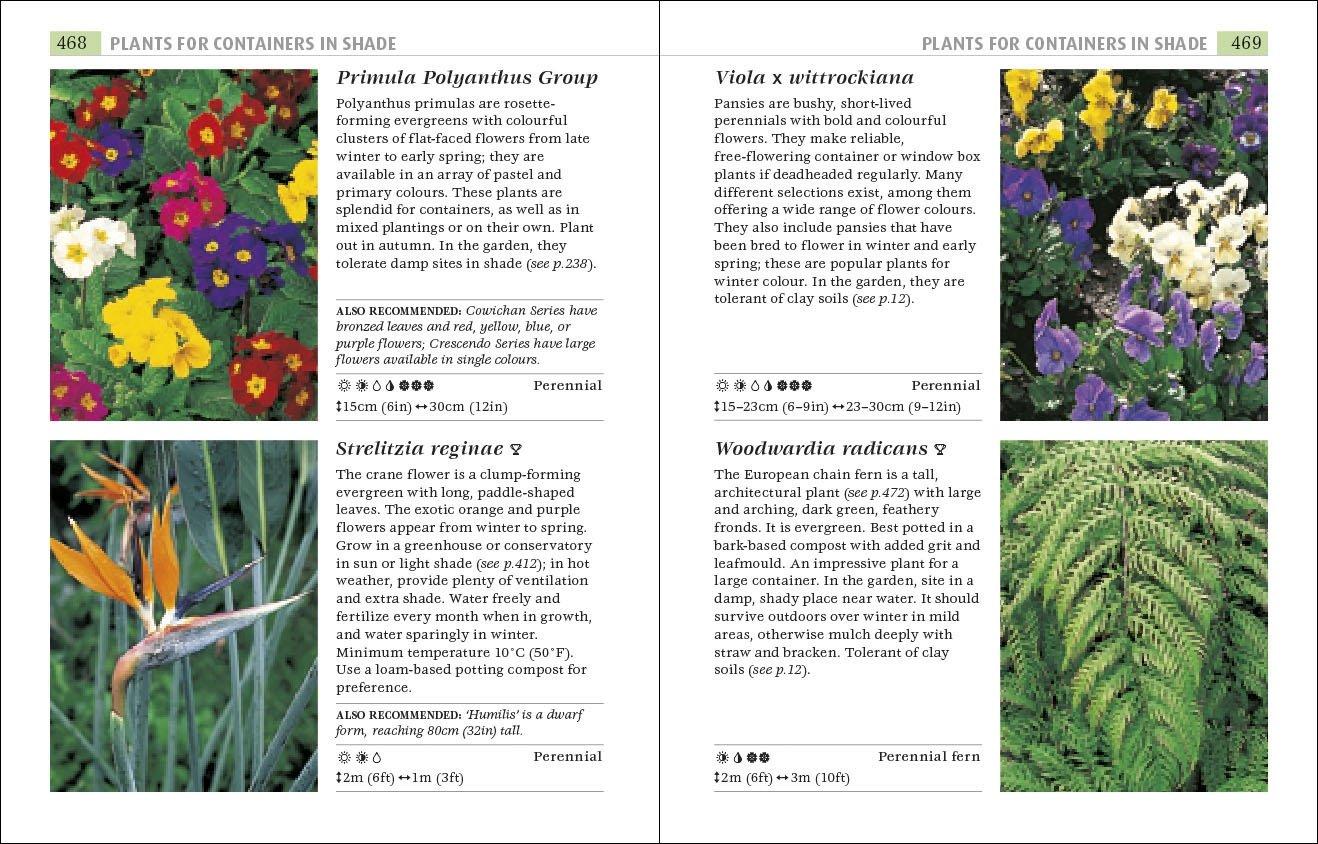 rhs plants for places dk 9781405362962 amazon com books