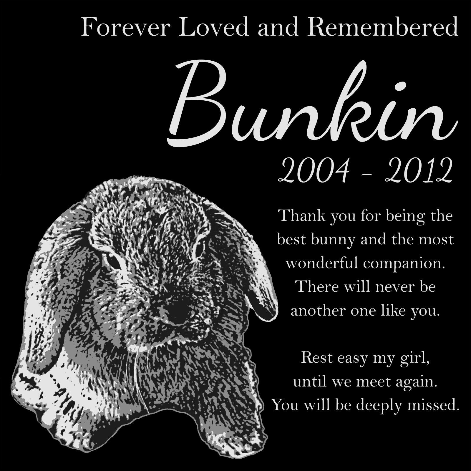 Personalized Lop Eared Rabbit Bunny Pet Memorial 12''x12'' Custom Engraved Black Granite Grave Marker Head Stone Plaque BUN1