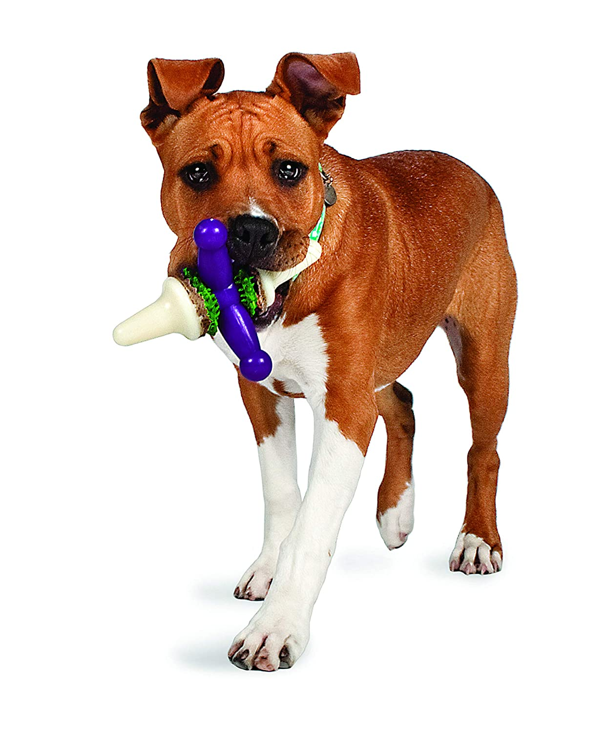 (Large) Petsafe Busy Buddy Jack Dog Toy, Large