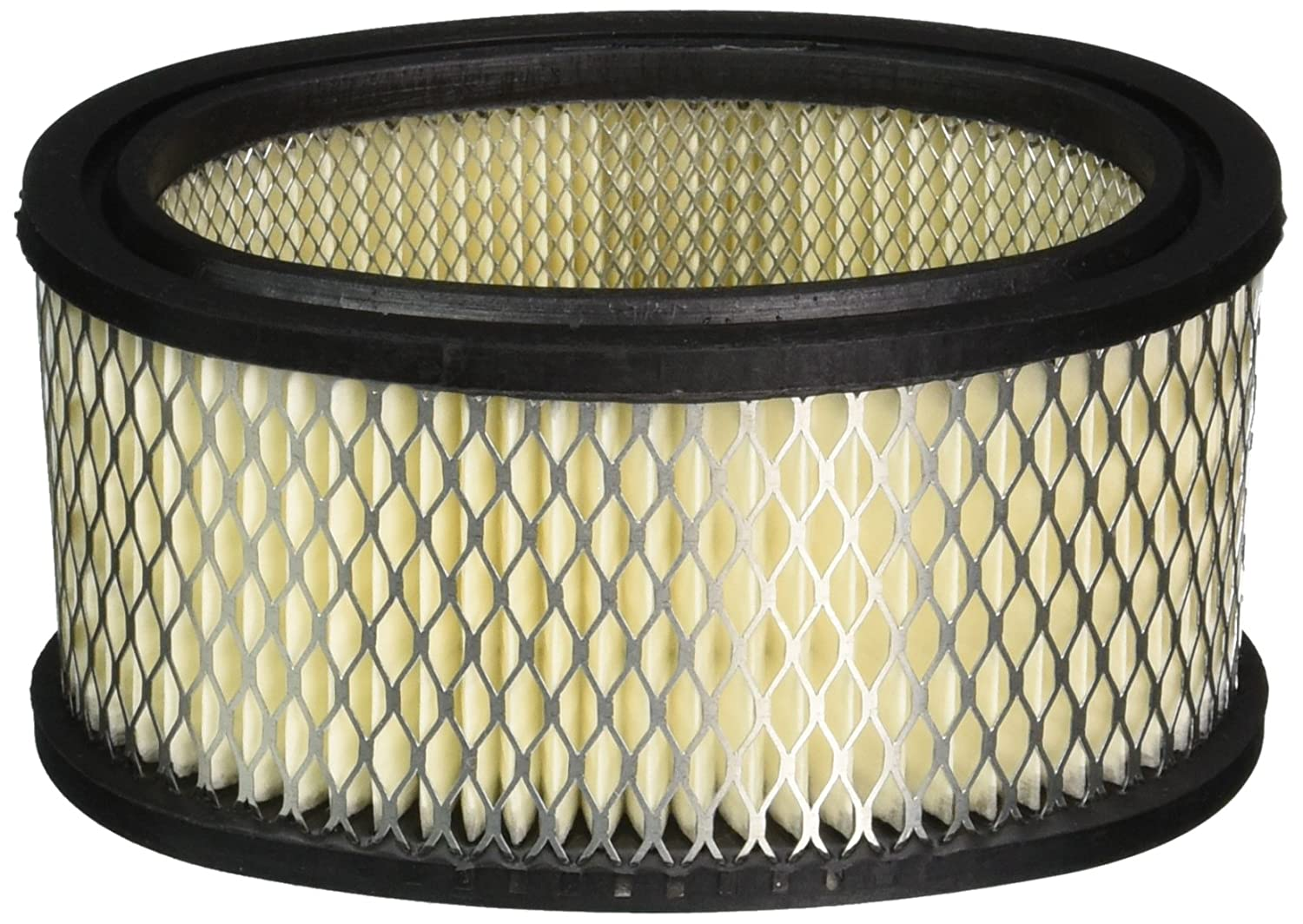 Stens 100-198 Briggs and Stratton 393725 Air Filter