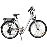 e-Ranger's Cruiser High Quality and Specification Electric Bike