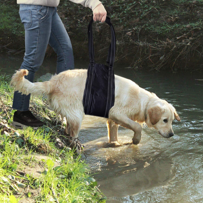 Harnais portable pour chien pour le dos des jambes harnais de soutien des hanches pour aider /à soulever les chiens /à larri/ère pour aider les chiens canins et la r/é/éducation des ligaments crois/és K9