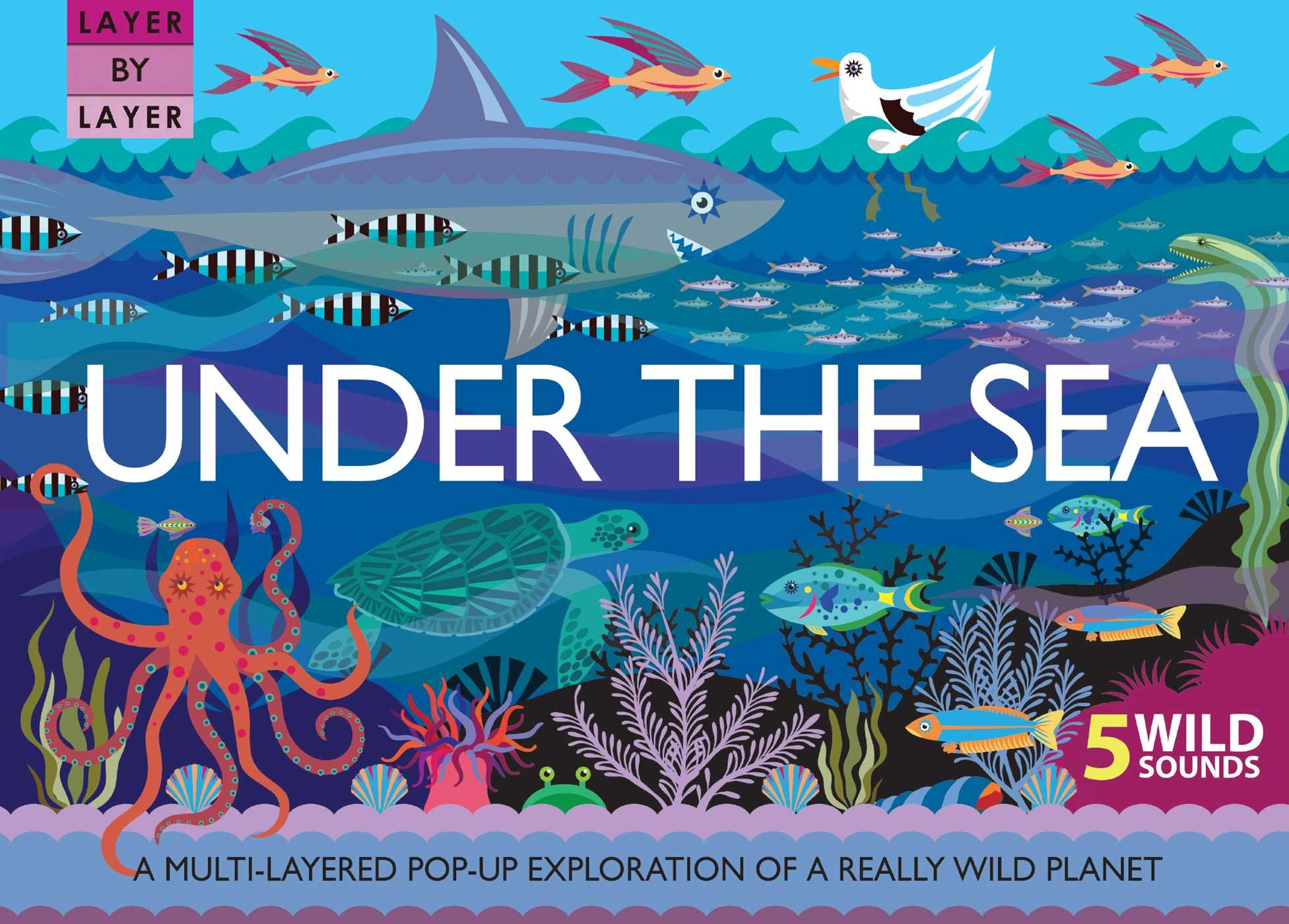 Layer by Layer: Under the Sea: Anne Rooney, Suzanne