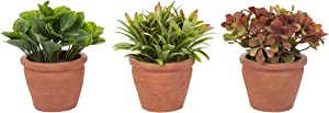 """Pure Garden Artificial 6"""" Tall Greenery Arrangement House Plants Round Set of 3, Decorative Faux Indoor Ornamental Potted Foliage"""