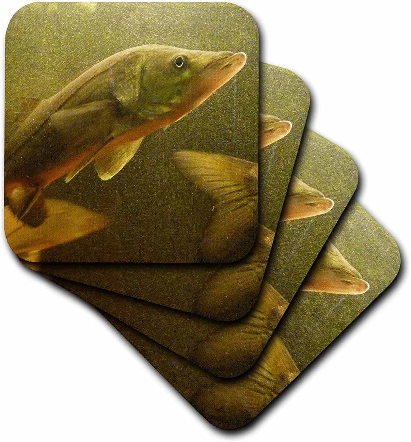 3dRose CST_13991_1 The Elusive Snook-Soft Coasters, Set of 4