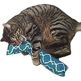 """(REFILLABLE) 15"""" Catnip Cat Kicker Toys/Kitty Kick Sticks/Cat Kick Stix"""
