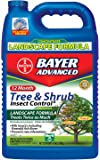 bayer advanced tree and shrub protect and feed instructions