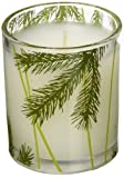 Amazon Price History for:Thymes Frasier Fir Poured Candle with Decorative Glass Jar - 6.5oz