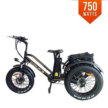 258872c6c59 Bpmimports BPM 950A 20' 3 Wheel Electric Trike Tricycle 48V Fat Tire Bike  Bicycle 750W