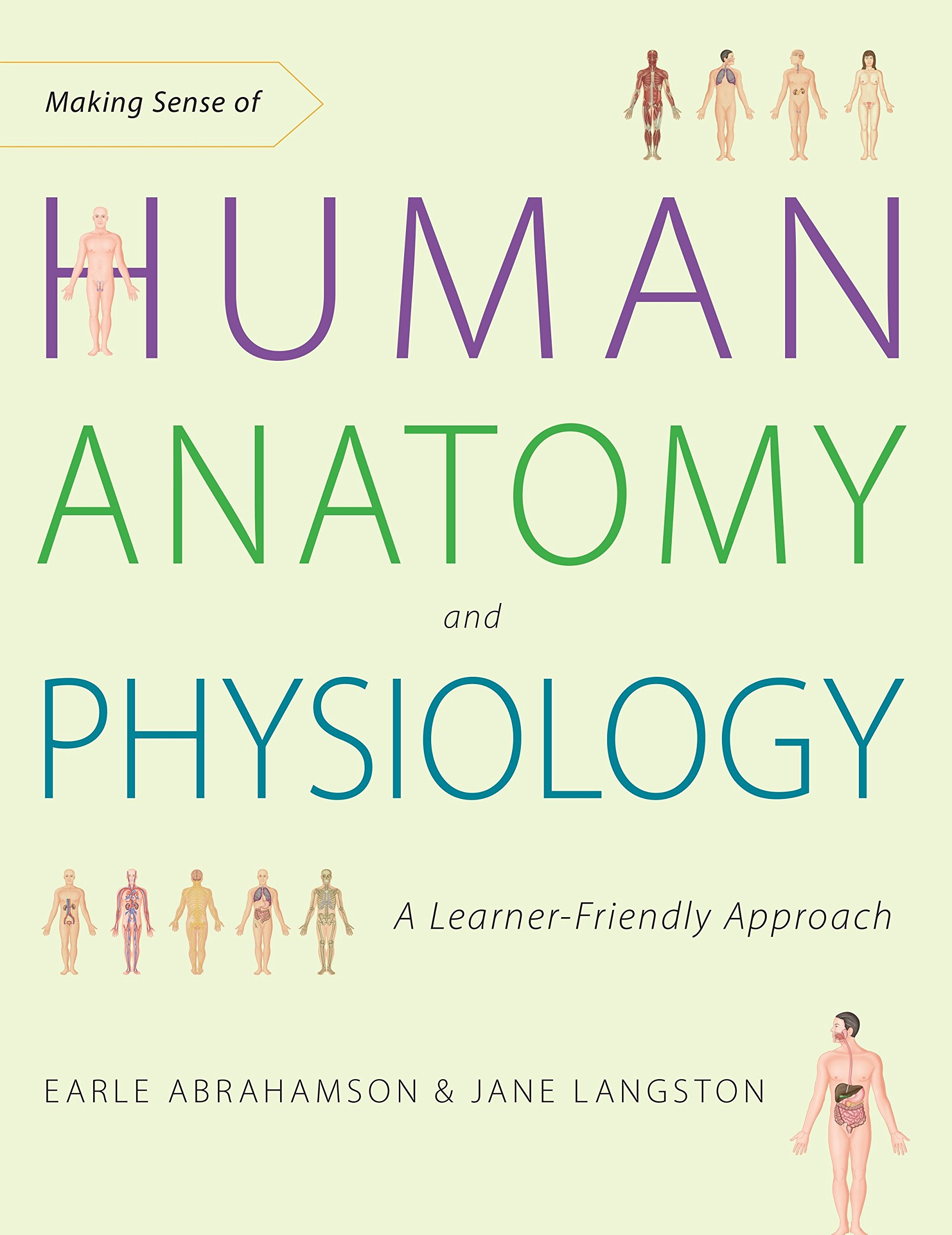 Making Sense of Human Anatomy and Physiology: A Learner-Friendly ...