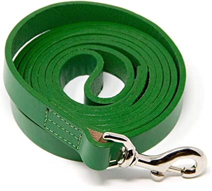 Best for Training Water Resistant Heavy Full Grain Leather Lead Logical Leather Dog Leash