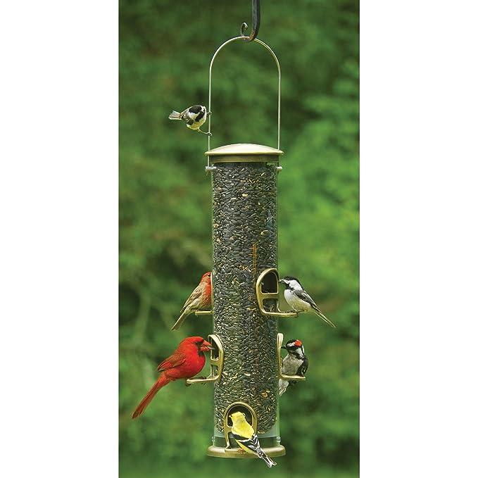 Amazon Aspects 420 Antique Brass Quick Clean Big Tube Feeder Large Wild Bird Feeders Garden Outdoor