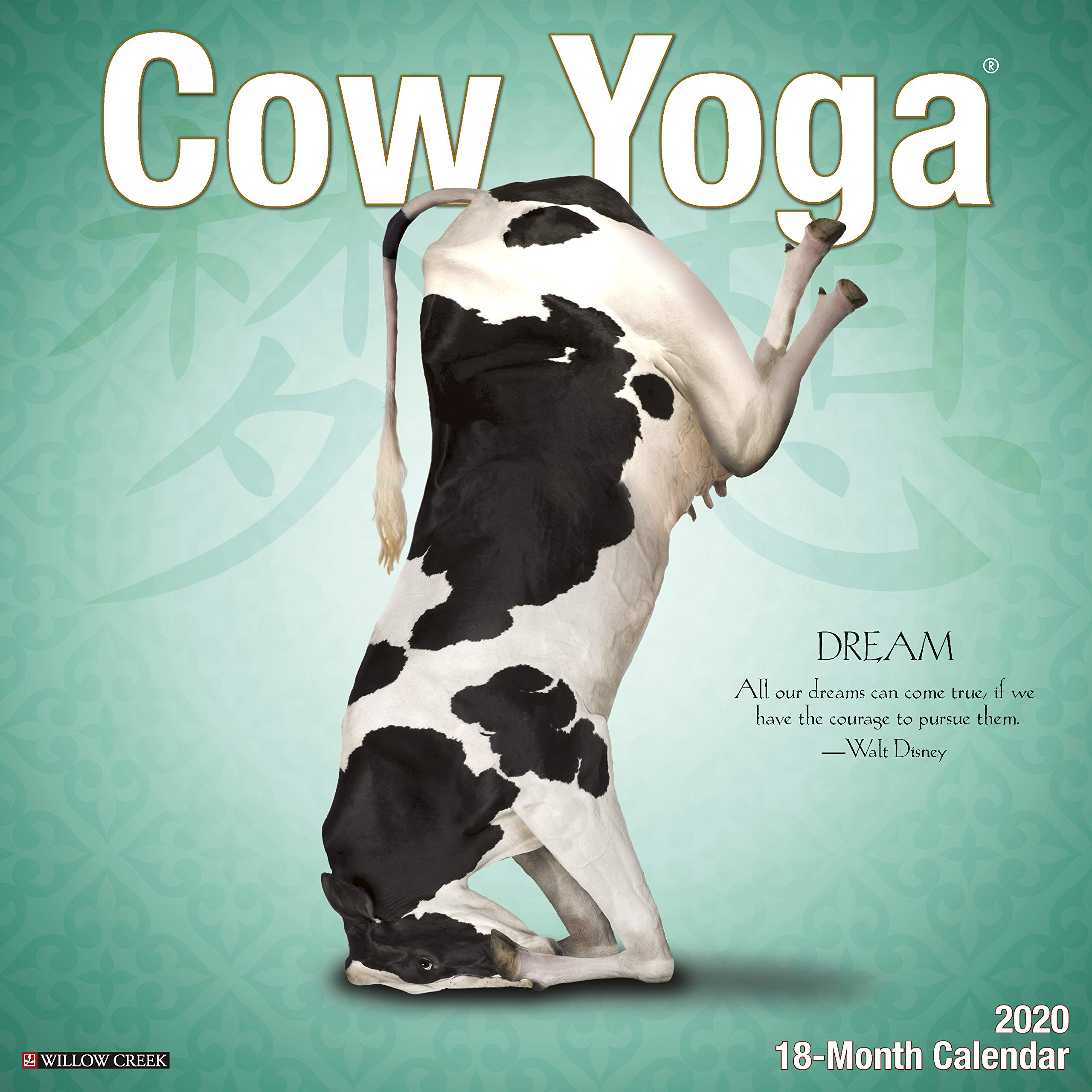 Cow Yoga 2020 Wall Calendar: Amazon.es: Willow Creek Press ...