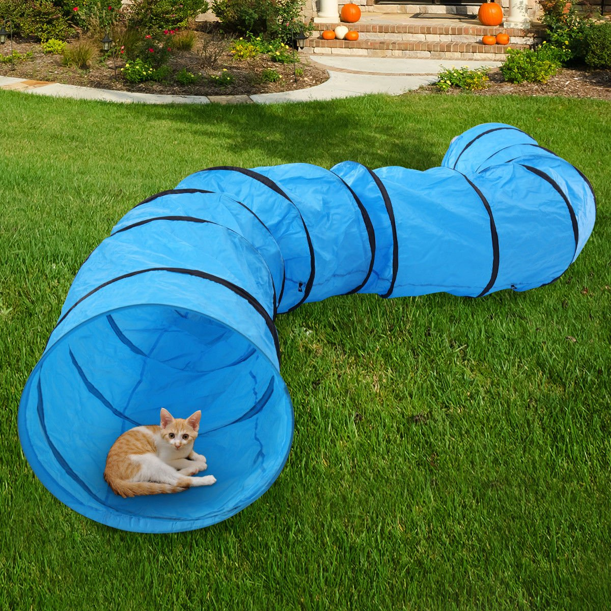 patcharaporn 16.4' Pet Dog Training Agility Tunnel Chute Puppy Obedience Tube Outdoor