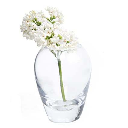 Chive - Set of 6 George Shape 1 3\  Wide 4\  Tall Unique Clear Glass Flower Vase Small and Elegant Oval Bud Vase Decorative Floral Vase for Home Decor ...  sc 1 st  Amazon.com & Amazon.com: Chive - Set of 6 George Shape 1 3\