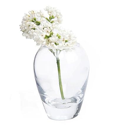 Amazon Chive George Shape 1 Unique Clear Glass Flower Vase
