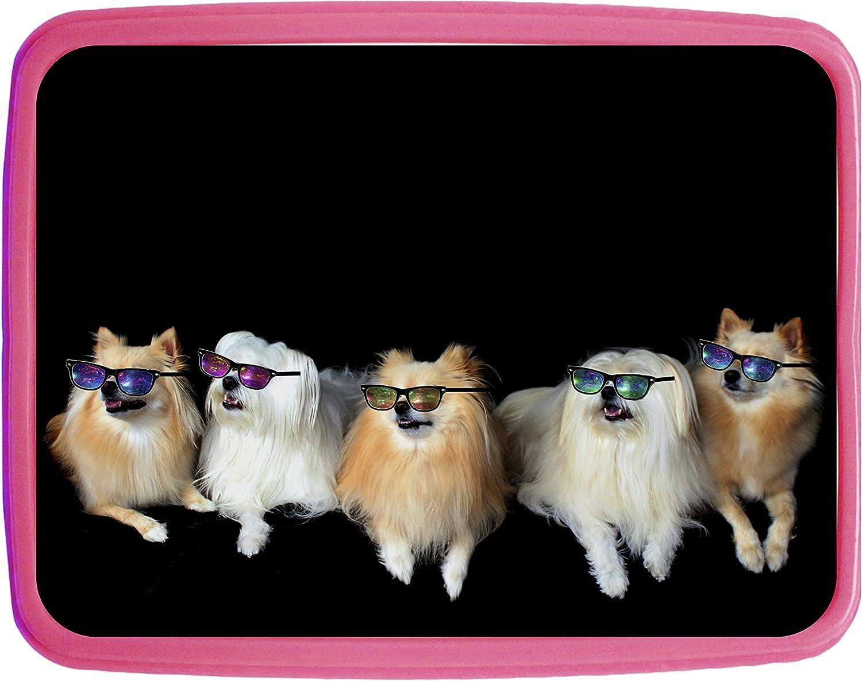 Hipster Pomeranians Girls Pink Preschool Toddler Childrens Backpack /& Lunch Box Set