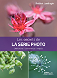 Les secrets de la série photo: Démarche - Cohérence - Impact