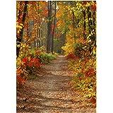Zibuyu Photography Background Fabric Autumn Forest Wall Studio Backdrop Cloth