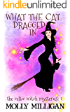What The Cat Dragged In (The Celtic Witch Mysteries Book 1) (English Edition)