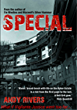 Special: What if vigilante justice went too far... (The Byker crime thriller series Book 2)