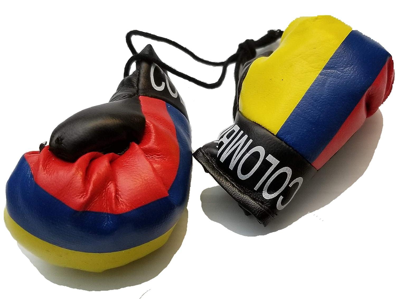 Amazon.com: BUNFIRES - 2 guantes de boxeo con bandera de ...