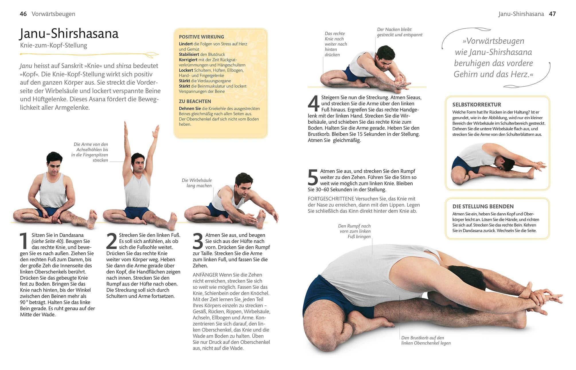 Iyengar Yoga für Anfänger Die besten Übungen zum Kräftigen und ...