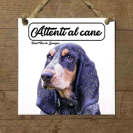 Basset Bleu de gascogne cuidado con el Perro matrícula ...