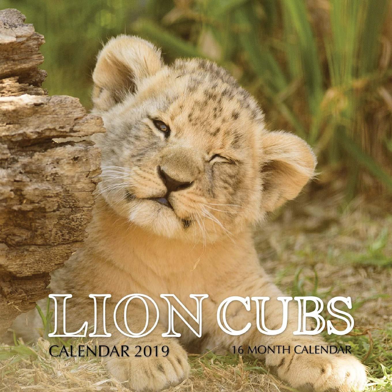 Lion Cubs Calendar 2019: 16 Month Calendar: Mason Landon