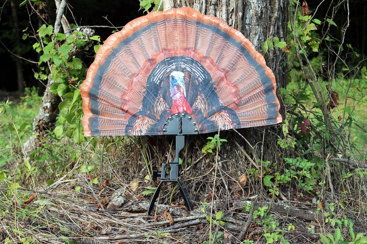 MOJO Outdoors HW2453 Tail Chaser Max Turkey Hunting Decoy by MOJO Outdoors (Image #4)