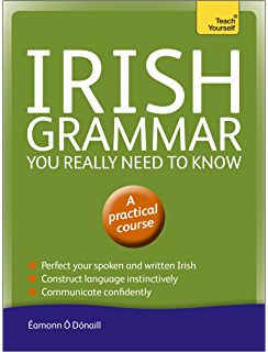 Sengoidelc old irish for beginners irish studies kindle edition irish grammar you really need to know teach yourself teach yourself language reference fandeluxe Images
