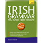 Irish Grammar You Really Need to Know: Teach Yourself (Teach Yourself Language Reference)