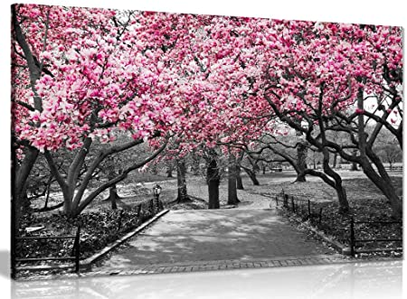 Black & White Wall Art Pink Blossoms Canvas Wall Art Picture Print ...