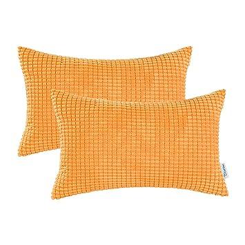 Amazon.com: CaliTime fundas de cojines decorativos, 2 ...