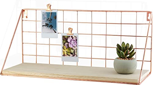 Parker Terminus Modern Rose Gold Floating Wire Shelves, Set of 2