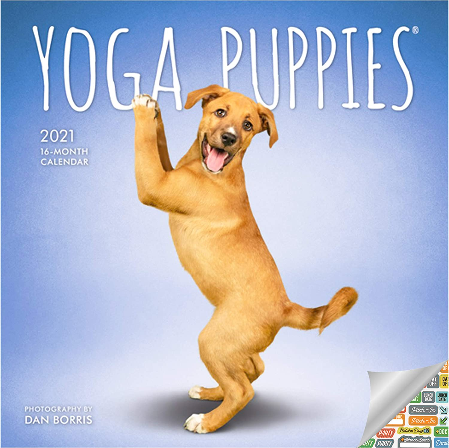 Yoga Puppies Calendar 2021 Bundle - Deluxe 2021 Yoga Puppies Mini Calendar with Over 100 Calendar Stickers (Puppies Gifts, Office Supplies)