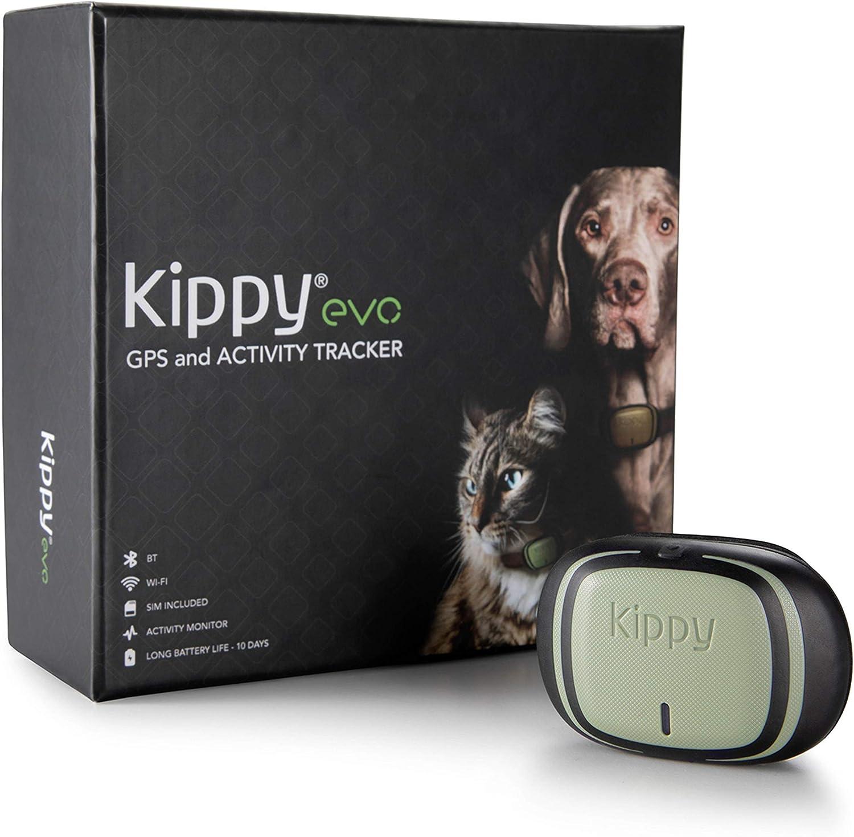 Kippy EVO, El Nuevo GPS and Actividad para Perros y Gatos, 38 gr, Waterproof, Bateria 10 dias, Green Forest