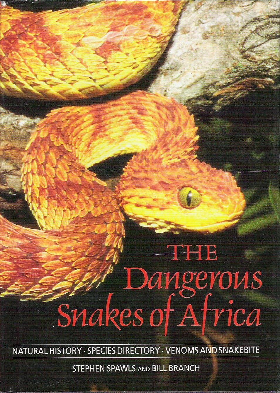 dangerous snakes of africa natural history species directory