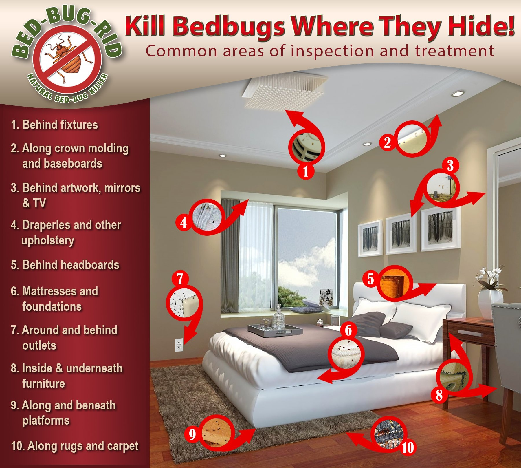 BED-BUG-RID Pest-Rid BBR3oz3pack Pest-Rid Travel 3 oz Size Manual Pest Spray Bottle (3 Pack) by BED-BUG-RID
