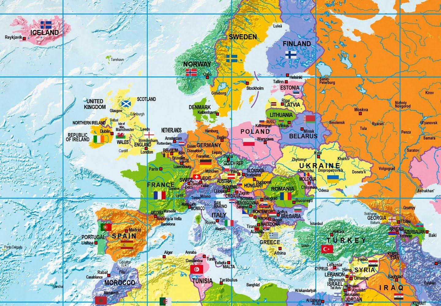 murando fran/çais 90x60cm Carte du monde pour mettre des punaises /& Tableau sur toile Panneau de fibres de bois tableau daffichage pour mettre des notes Continent Geographie k-A-0300-v-a