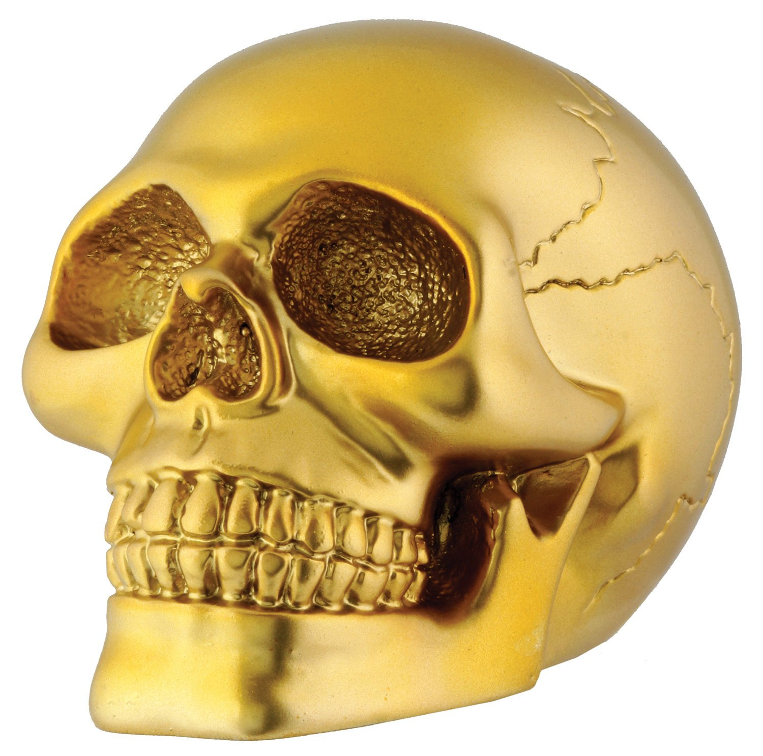Amazon Gold Skull Head Collectible Skeleton Decoration Figurine Model Home Kitchen