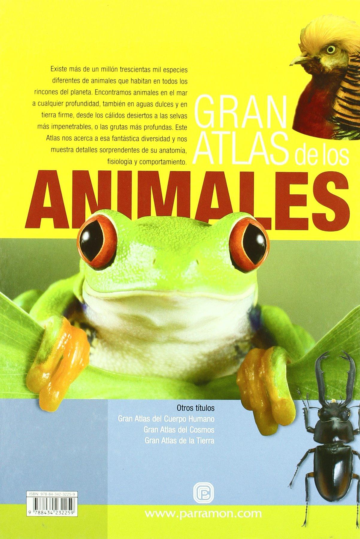GRAN ATLAS DE LOS ANIMALES (Grandes atlas): Amazon.es: Gustavo ...