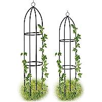 Relaxdays, Negro Set de Dos Soportes para Plantas, Enrejado para jardín, Arco para trepadoras, Impermeable, 139 x 149 cm