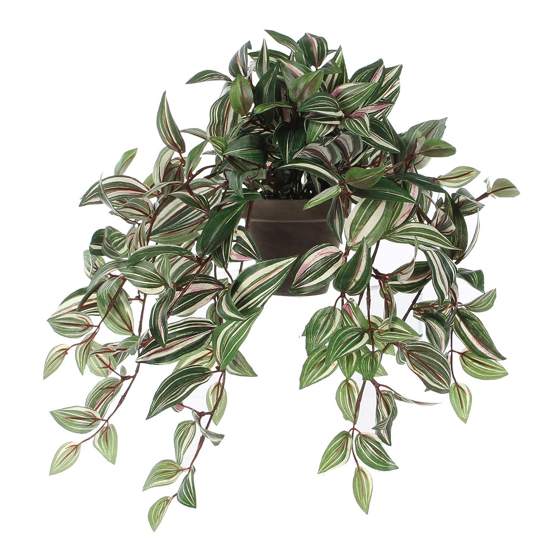 MICA Decorations 976674 Tradescantia en haengend l45b25h25 Vert Plante en Pot Stan D11.5 Gris, Polyester, 45 x 25 x 52 cm 45x 25x 52cm Edelman