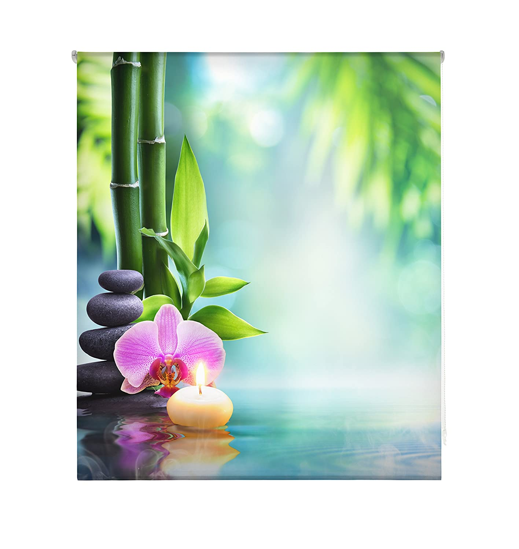 Tenda a Rullo Trasparente Stampa Digitale 110/x 180/cm Multicolore Blindecor W-Z-28223