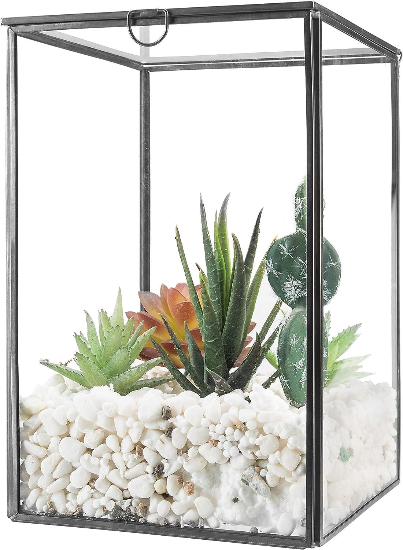 MyGift Clear Glass Plant Terrarium with Black Metal Frame, Tabletop Curio Case/Shadow Box