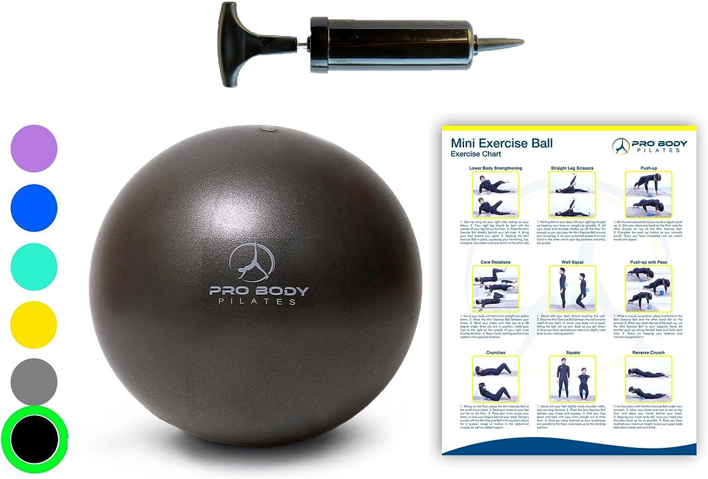 ProBody Pilates Mini Pelota de Ejercicio con la Bomba - Bola de ...