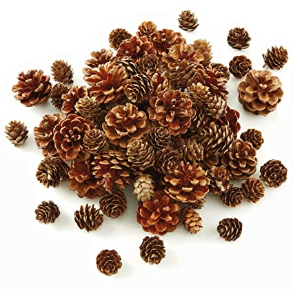 Amazon Hallmark Pinecone Vase Filler Home Kitchen